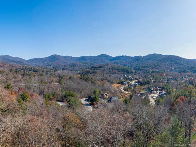 189 Elk Mountain Scenic Highway, Asheville, NC 28804 (#3684934) :: Charlotte Home Experts