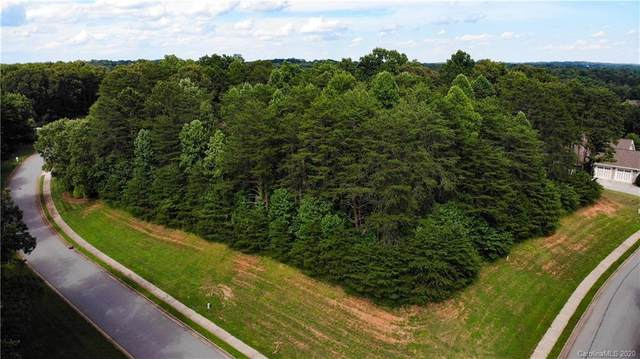 4066 Bob Jones Drive NE #27, Conover, NC 28613 (#3685339) :: Rowena Patton's All-Star Powerhouse