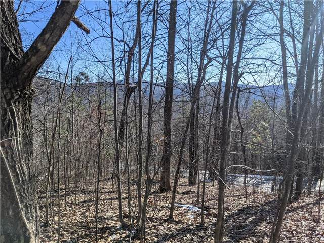 Lot 24 Bald Eagle Drive Lot  #24, Hendersonville, NC 28792 (#3685606) :: Stephen Cooley Real Estate Group