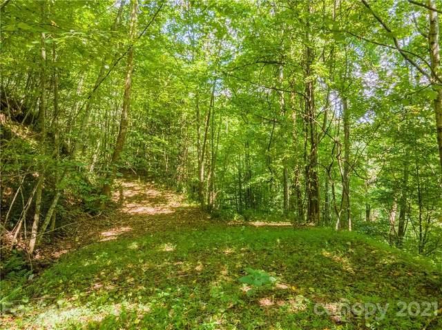 Lots 45/46 Poppi Drive, Waynesville, NC 28785 (#3685761) :: Modern Mountain Real Estate