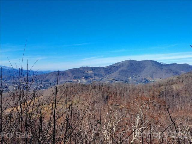 759 Cattail Lane #15, Waynesville, NC 28786 (#3688463) :: Modern Mountain Real Estate