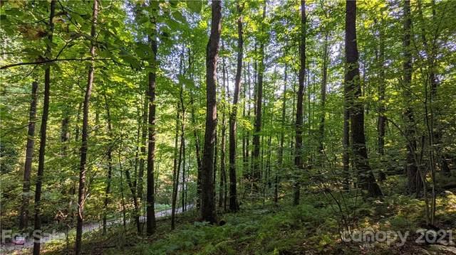 99999 Sand Branch Road, Black Mountain, NC 28711 (#3689791) :: High Vistas Realty