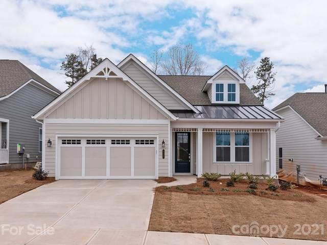 6429 Good News Drive, Charlotte, NC 28215 (#3690834) :: DK Professionals Realty Lake Lure Inc.