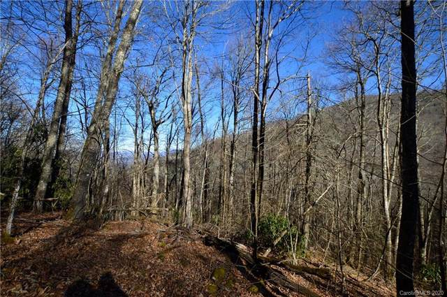 51 Gata Trail #51, Maggie Valley, NC 28751 (#3693126) :: Carlyle Properties