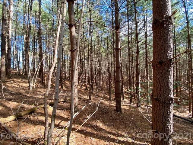 100 Rusty Hook Drive #94, Nebo, NC 28761 (MLS #3694156) :: RE/MAX Journey