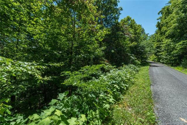 9 Wood Haven Lane #108, Black Mountain, NC 28711 (#3695069) :: Home and Key Realty