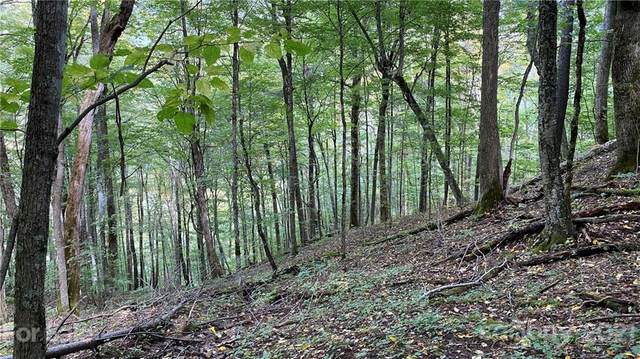 167 Puncheon Lane #167, Mars Hill, NC 28754 (#3696946) :: The Snipes Team | Keller Williams Fort Mill