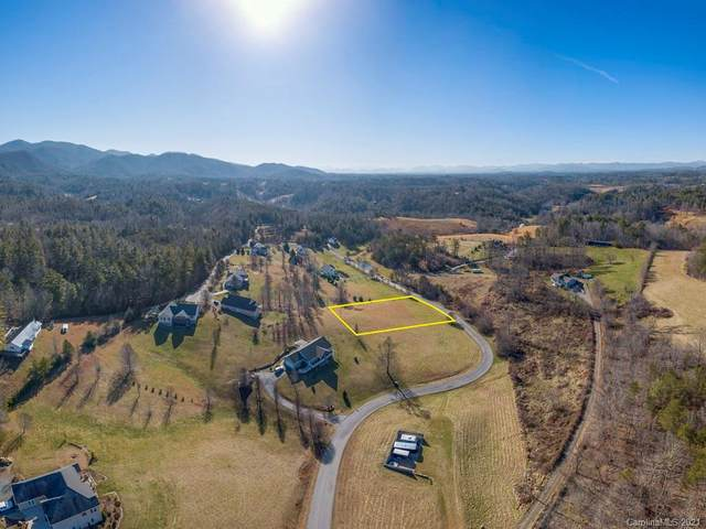 52 Ivy Meadows Drive, Weaverville, NC 28787 (#3699148) :: Carolina Real Estate Experts