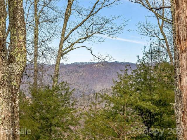 999 Falconwood Lane #25, Asheville, NC 28804 (#3700895) :: The Premier Team at RE/MAX Executive Realty