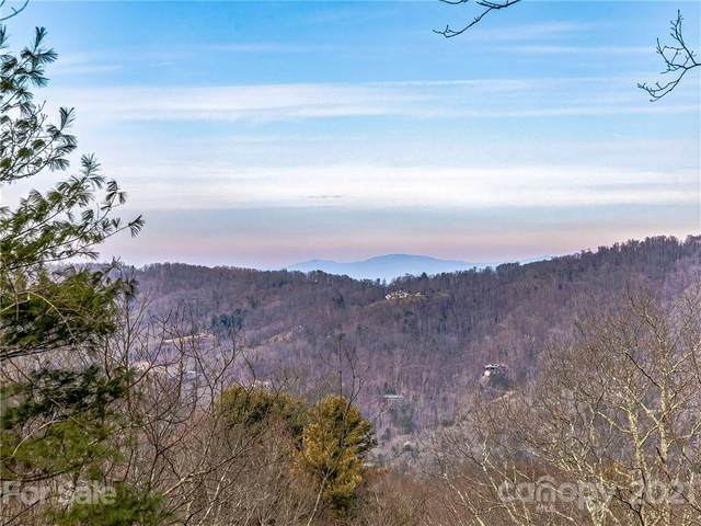 67 Mt Meadows Boulevard #26, Asheville, NC 28804 (#3700904) :: The Premier Team at RE/MAX Executive Realty