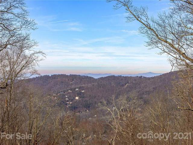 16 Mt Meadows Boulevard #31, Asheville, NC 28804 (#3700910) :: The Premier Team at RE/MAX Executive Realty