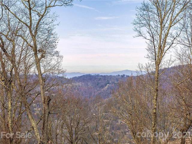 28 Mt Meadows Boulevard #32, Asheville, NC 28804 (#3701065) :: The Premier Team at RE/MAX Executive Realty