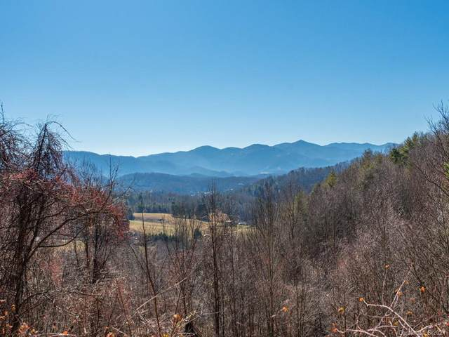 405 Rimesdale Way #33, Waynesville, NC 28785 (#3701069) :: The Premier Team at RE/MAX Executive Realty