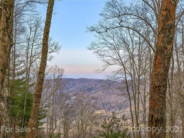 38 Mt Meadows Boulevard #33, Asheville, NC 28804 (#3701070) :: The Premier Team at RE/MAX Executive Realty