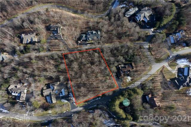 515 Hagen Drive # 12, Hendersonville, NC 28739 (#3701942) :: LePage Johnson Realty Group, LLC