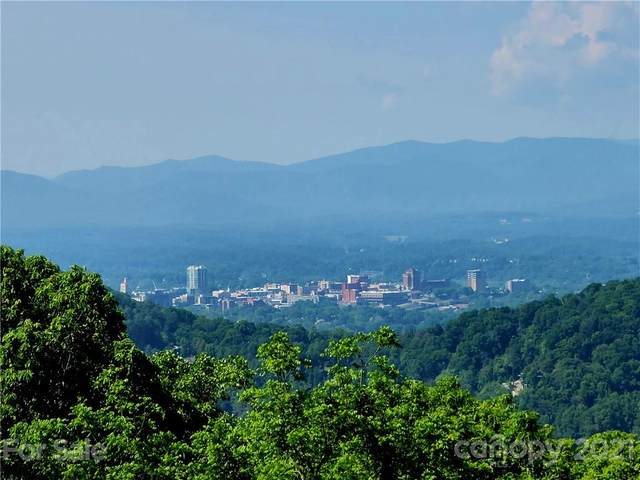 4.38 Acres Hunters Way Lot 4, Asheville, NC 28804 (#3702852) :: Todd Lemoine Team