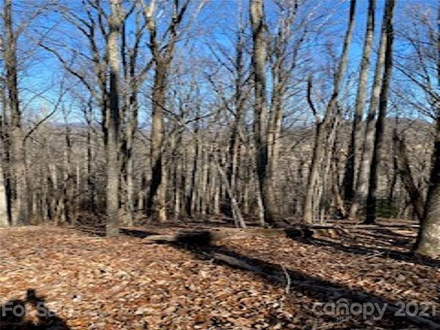 9999 Sluder Branch Road 3C, Candler, NC 28715 (#3703090) :: MOVE Asheville Realty