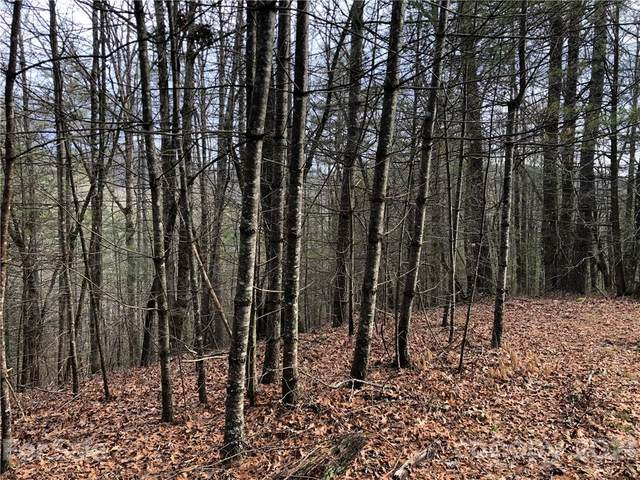 Lot #12 Wellspring Way #12, Brevard, NC 28712 (#3704142) :: Stephen Cooley Real Estate Group