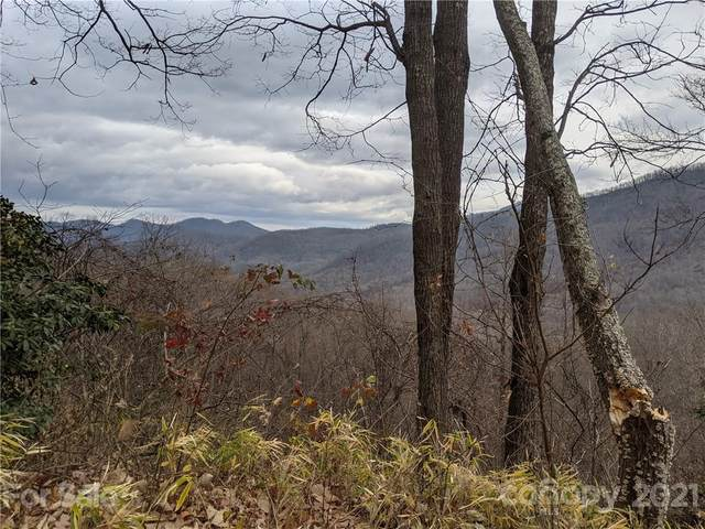Lot C31 Kestrel Lane C31, Black Mountain, NC 28711 (#3704629) :: Keller Williams Professionals