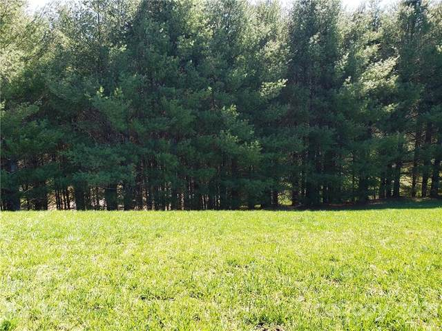 Lot 54 Bear Track Lane, Sparta, NC 28675 (#3705956) :: Willow Oak, REALTORS®
