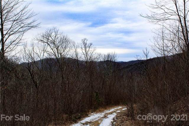 1824 Black Rock Road #76, Qualla, NC 28719 (#3707567) :: BluAxis Realty