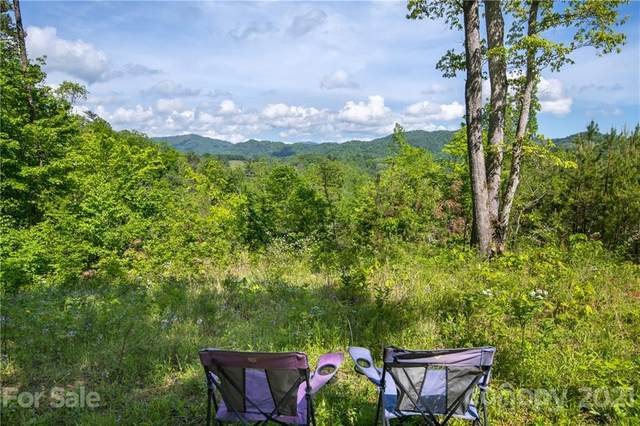 000 Mearwild Drive #43, Marshall, NC 28753 (#3710290) :: Stephen Cooley Real Estate Group