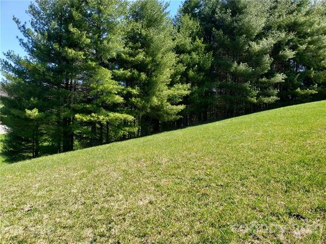 Lot 37 Solitude Lane, Sparta, NC 28675 (#3711404) :: The Premier Team at RE/MAX Executive Realty