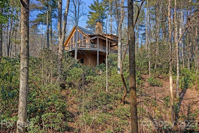65 Young Miller Road, Rosman, NC 28772 (#3712393) :: Lake Wylie Realty