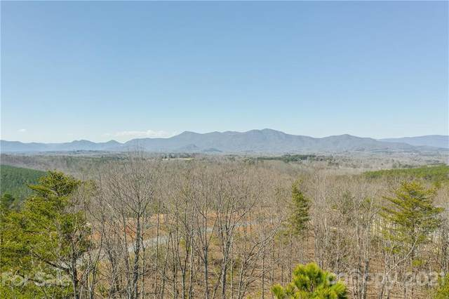 00 Prospect Point Drive #8, Tryon, NC 28782 (#3712972) :: LePage Johnson Realty Group, LLC