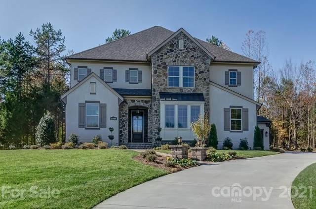 13600 Castleford Drive, Mint Hill, NC 28227 (#3713174) :: The Premier Team at RE/MAX Executive Realty