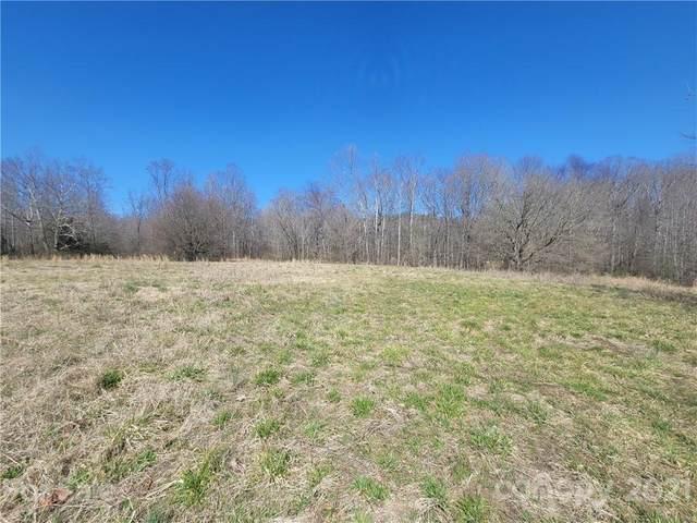 00 Horseshoe Lake Road, Lincolnton, NC 28092 (#3714665) :: Love Real Estate NC/SC