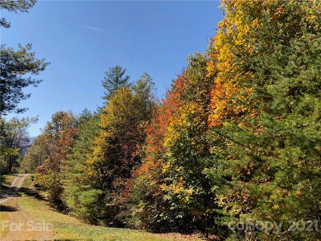 281 Wild Iris Lane #45, Marshall, NC 28753 (#3719142) :: TeamHeidi®