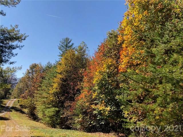 281 Wild Iris Lane #45, Marshall, NC 28753 (#3719142) :: Premier Realty NC