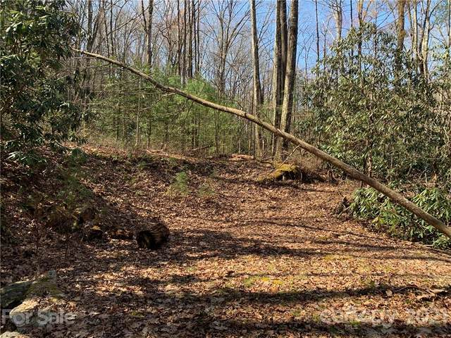 TBD Peppervine Circle #94, Rosman, NC 28772 (#3720266) :: Stephen Cooley Real Estate Group