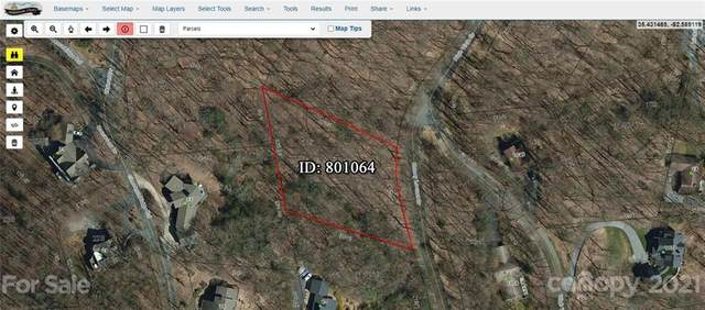 3 Honey Locust Drive, Mills River, NC 28759 (#3722642) :: MOVE Asheville Realty