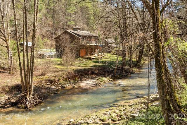 168 Hungry River Road, Flat Rock, NC 28731 (#3724183) :: The Snipes Team | Keller Williams Fort Mill
