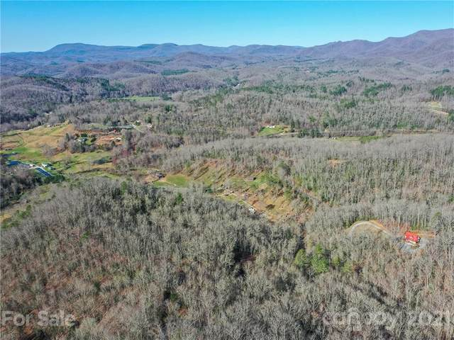 L20 Barts Branch Drive, Balsam Grove, NC 28708 (#3725794) :: Home and Key Realty
