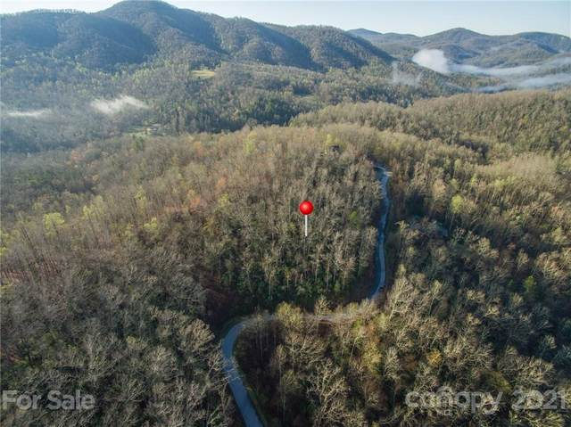 88 Havens Creek Road, Black Mountain, NC 28711 (#3725984) :: MOVE Asheville Realty
