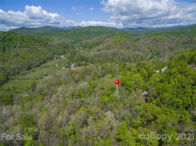 123 Havens Creek Road, Black Mountain, NC 28711 (#3725989) :: TeamHeidi®