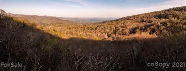 0 Black Bear Trail, Blowing Rock, NC 28605 (#3726009) :: Carlyle Properties