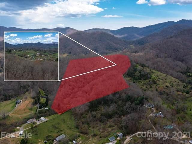 55 Girdwood Heights, Canton, NC 28716 (#3728619) :: LePage Johnson Realty Group, LLC