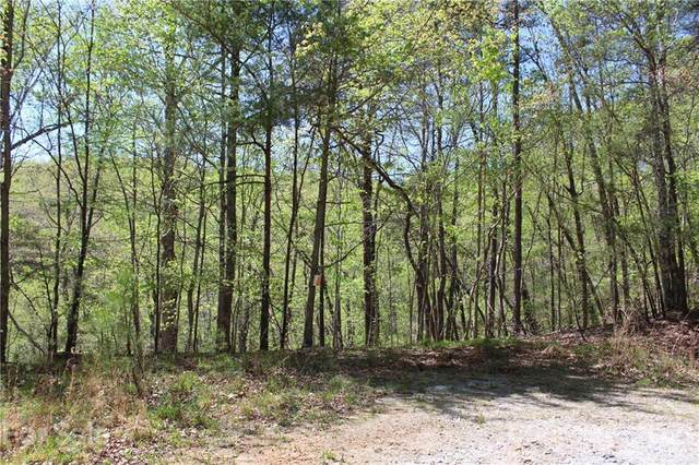 Lot 363 Hawks Court, Lake Lure, NC 28746 (#3729276) :: Carlyle Properties