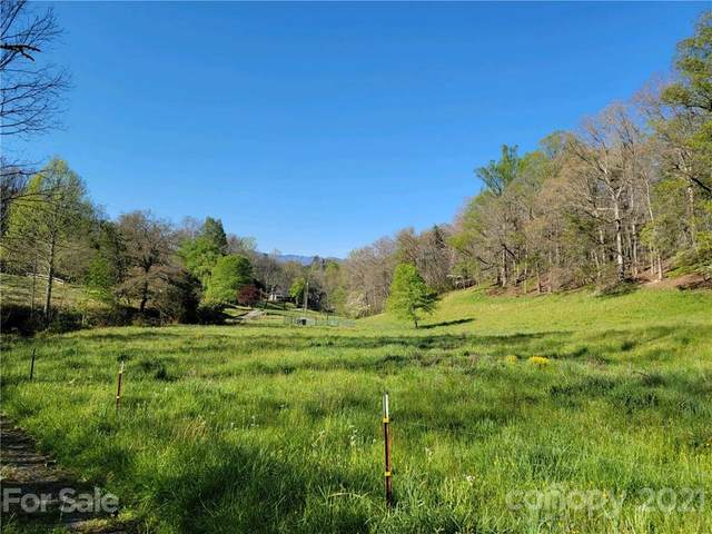 99999 Sheeprock Cove Road, Whittier, NC 28789 (#3729837) :: Carlyle Properties