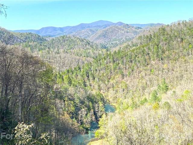 TBD Bear River Lodge Trail 90 & 91, Marshall, NC 28753 (#3730240) :: Willow Oak, REALTORS®