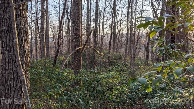 12.6 Acres on Forest Brook Drive, Black Mountain, NC 28711 (#3730676) :: Stephen Cooley Real Estate Group