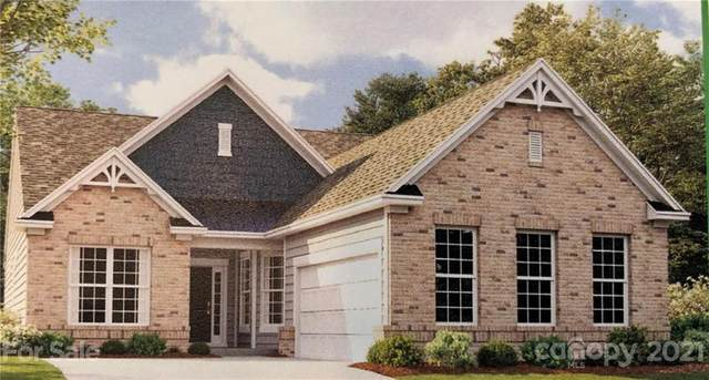 1025 Bunker Hill Road #2003, Waxhaw, NC 28173 (#3735411) :: Puma & Associates Realty Inc.