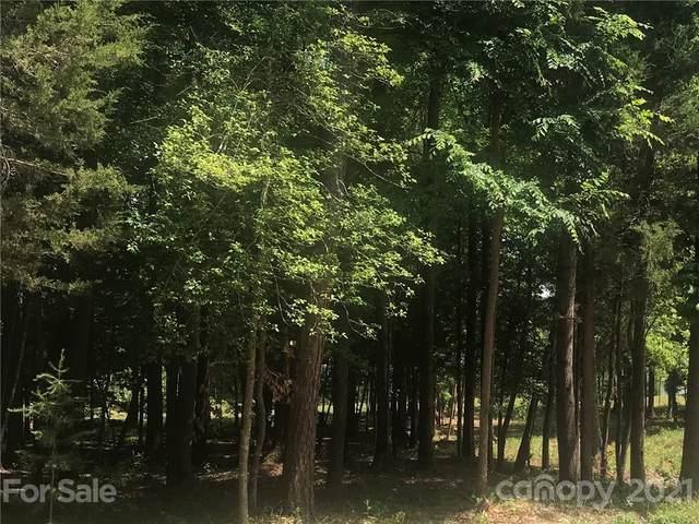 569 Evergreen Road, Lake Wylie, SC 29710 (#3736025) :: Carmen Miller Group