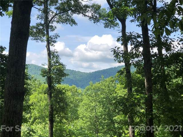 72 Smokey Ridge Trail #196, Arden, NC 28704 (#3736329) :: Todd Lemoine Team