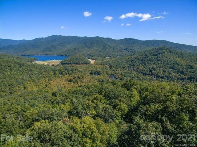 6 Evergreen Drive, Black Mountain, NC 28711 (#3737134) :: The Allen Team