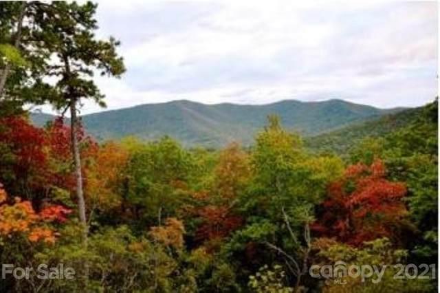 68 Smokey Ridge Trail #197, Arden, NC 28704 (#3737716) :: BluAxis Realty